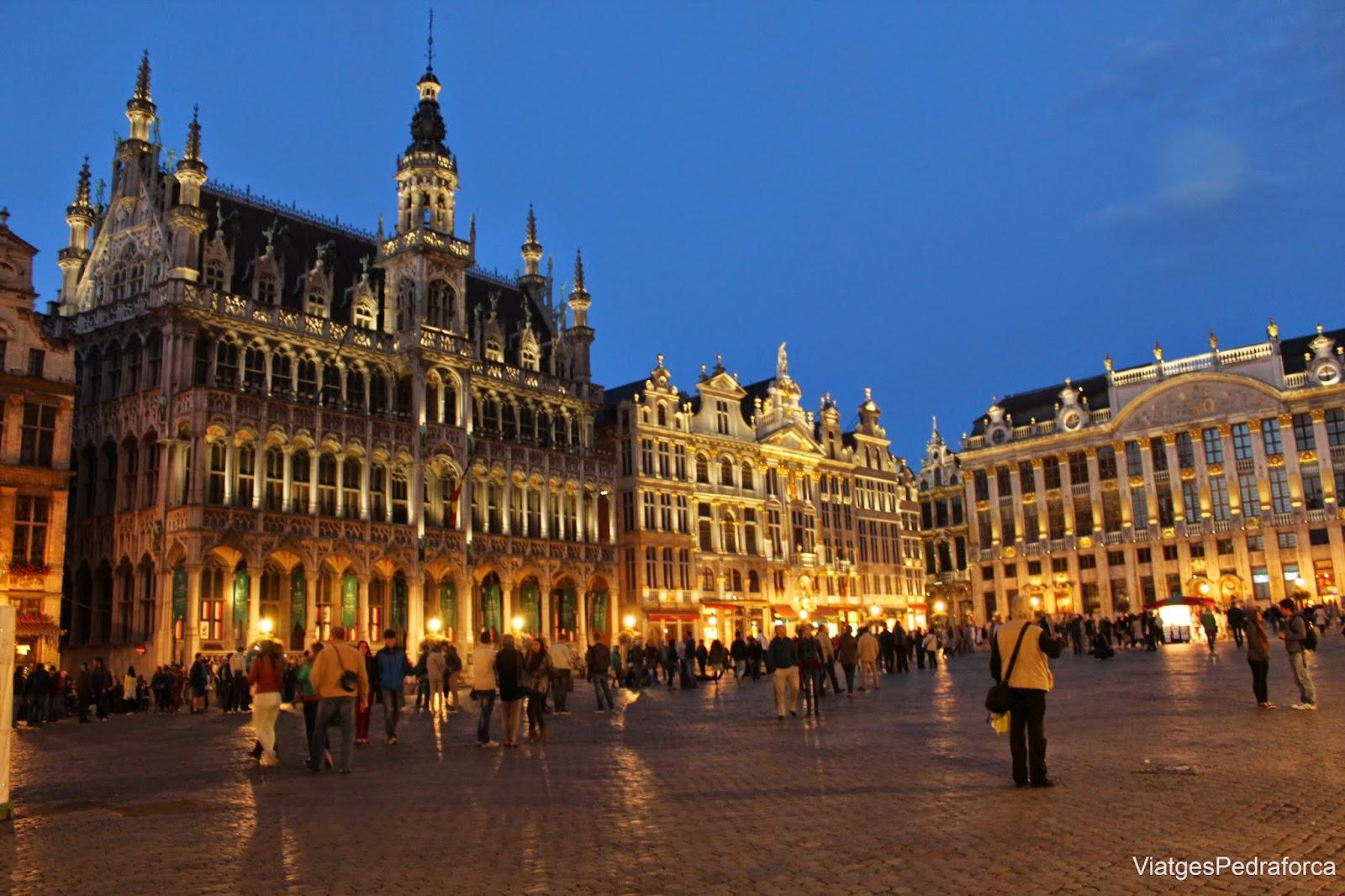 Grand Place de Brussel.les nocturna Belgica