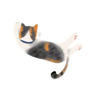 Ucil-kucing-kampung