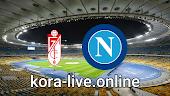 مباراة نابولي وغرناطة بث مباشر بتاريخ 25-02-2021 الدوري الأوروبي