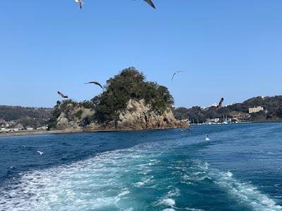 遊覧船サスケハナからの景色