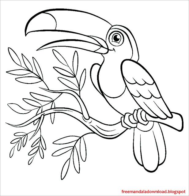 Printable Parrot Birds coloring