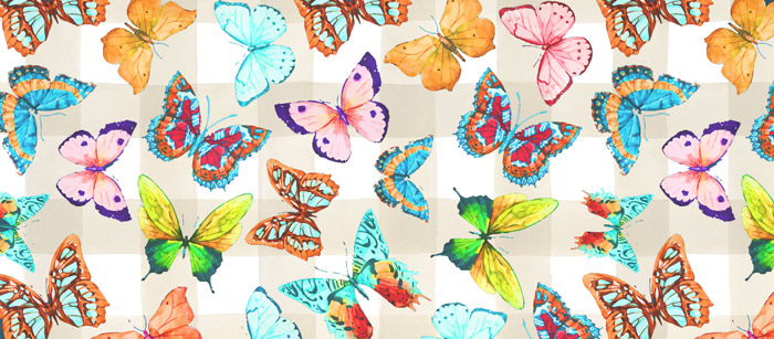 Butterfly Facebook Timeline Cover