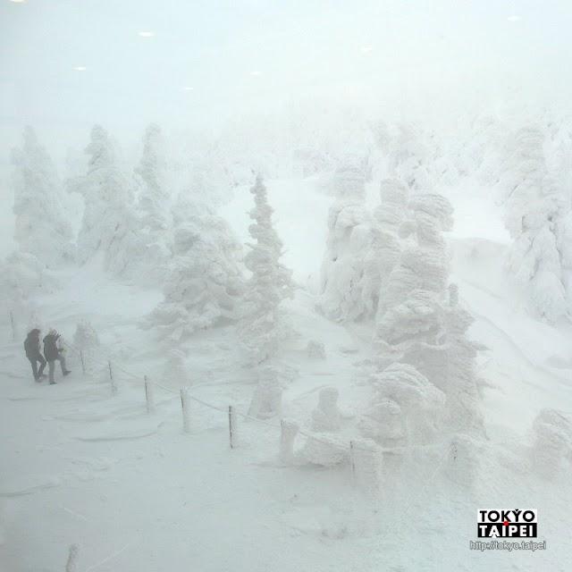 【藏王樹冰】銀白世界中的怪獸 即便凍傷也要看的壯麗景色
