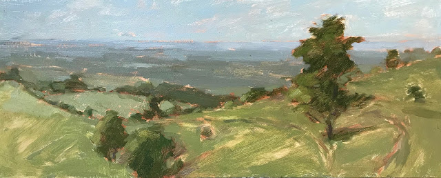 #335 'The South Downs' 30x50cm