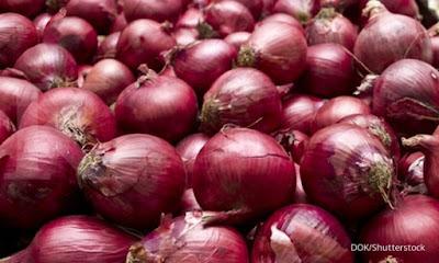 Bawang merah menjadi pewarna alami batik