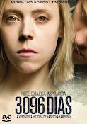3096 Dias (2013) ()