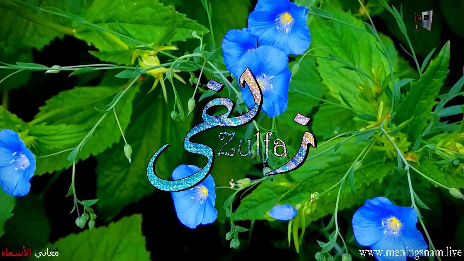 معنى اسم زلفى وصفات حاملة هذا الاسم Zolfa