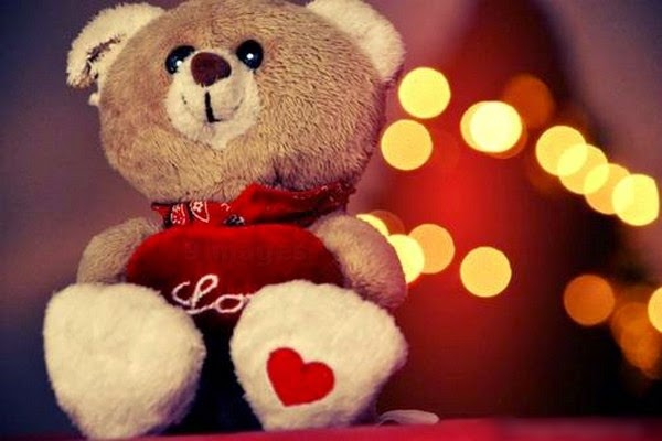 25 Teddy Bear Beautiful Display Pictures Images Profile