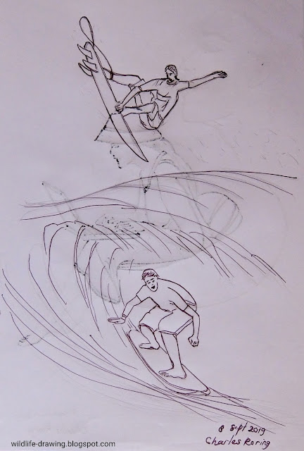 Pencil sketch of 2 boys waving surfing in West Papua