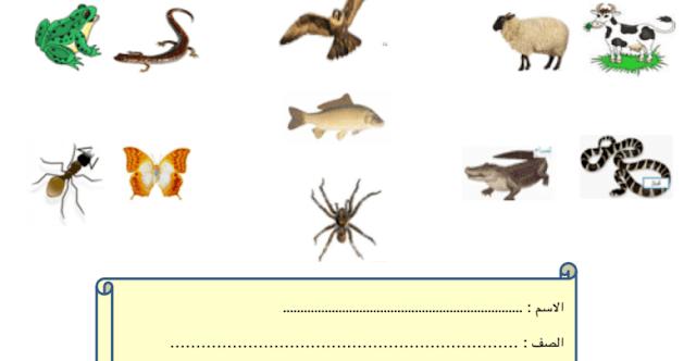 الوحدة الرابعة كل ما يتعلق بالحيوانات علوم صف أول فصل أول