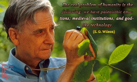E.O. Wilson sayings, Is humanity suicidal?