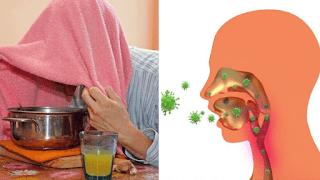 <img source='pic.gif' alt='Quatre faits sur le rhume et la grippe.'/>