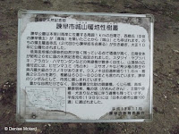 700 year old tree history, Isahaya Park - Nagasaki, Japan