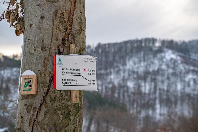 Winterwandern in Bad Harzburg | Kleiner und Großer Burgberg und Besinnungsweg | Baumschwebebahn | Wandern im Harz 03