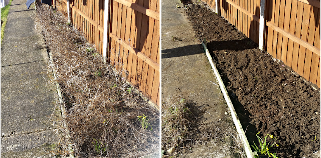 Before and after weeding the garden