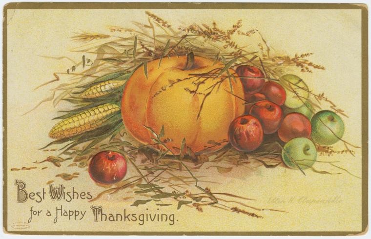 Fresh Vintage By Lisa S More Vintage Thanksgiving Postcards