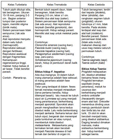 Klasifikasi hewan (invertebrata dan vertebrata)
