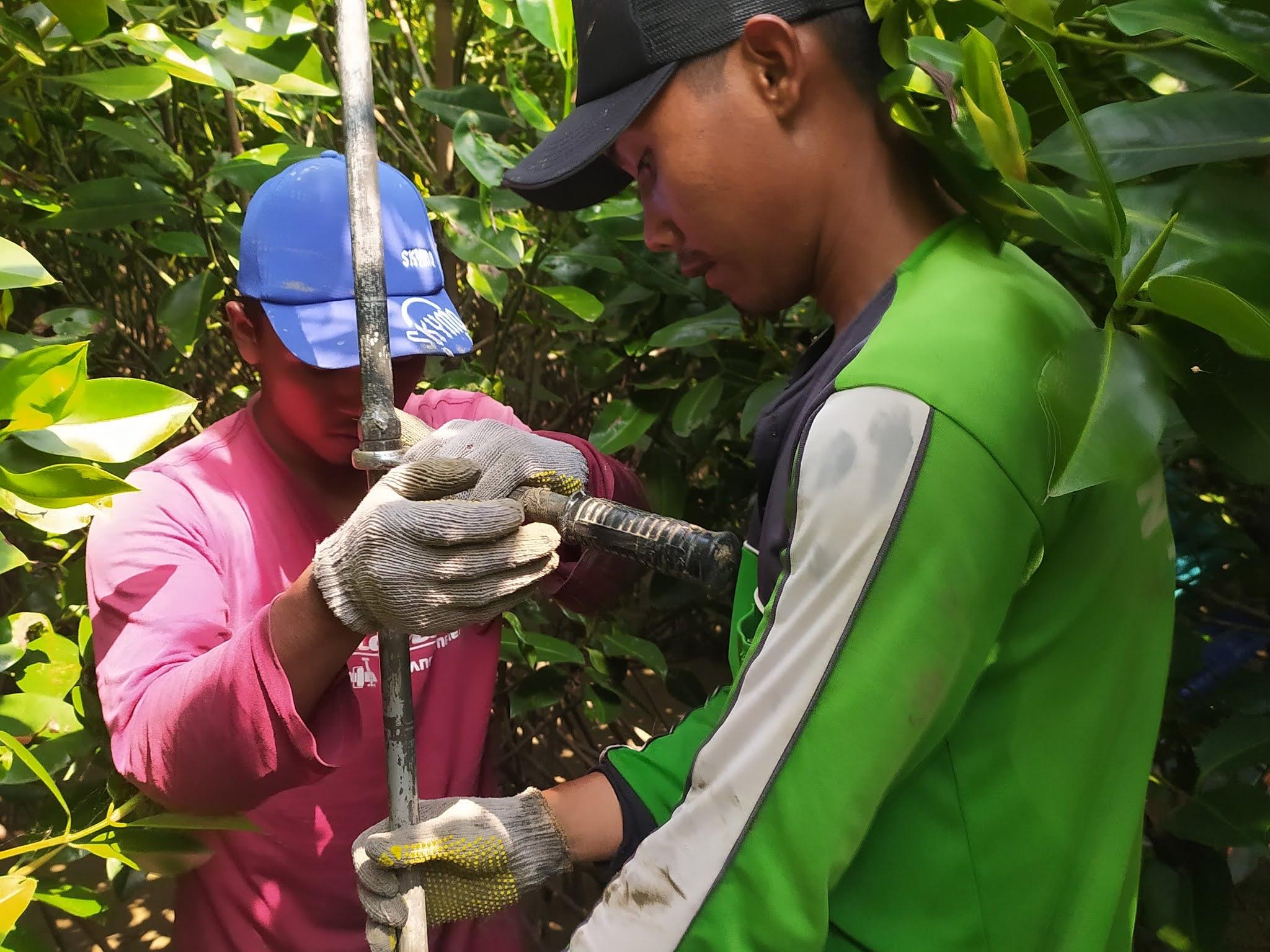 Jasa Konsultasi Analisis Karbon Mangrove