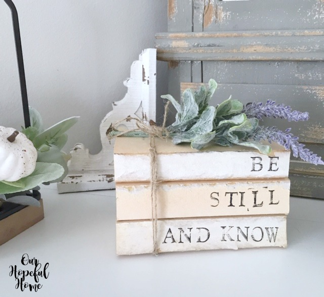 Be Still And Know book bundle lambs ear