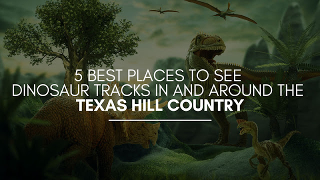 5 Best Places to See Dinosaur Tracks in and Around the Texas Hill Country