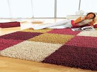Mengenal Jenis Jamur pada Karpet Penutup Lantai