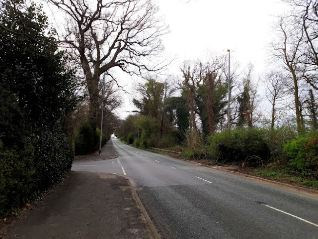 Image shows an empty road