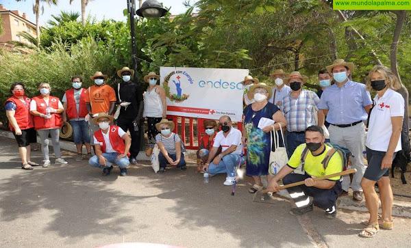 Finaliza el proyecto Plantas con Energía + Saludable promovido por Cruz Roja y Endesa