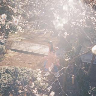 カネコアヤノ - 朝になって夢からさめて 歌詞