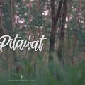 Lirik Lagu SMVLL - Self Reminder (Pitawat)