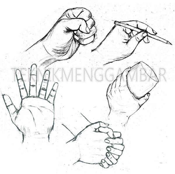 Cara Menggambar Telapak Tangan Teknik Menggambar