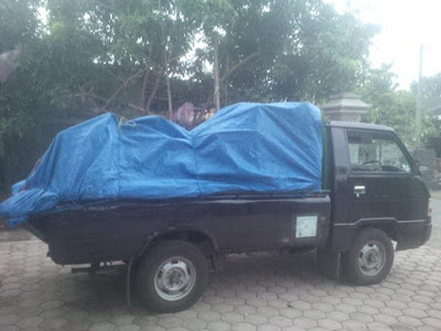 Carter Pick Up Banyuwangi Surabaya