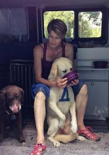 cão com megaesôfago sendo alimentado pelo dono