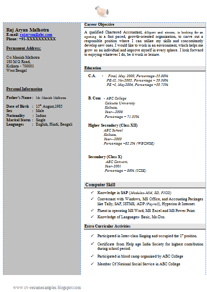 sample cv for cs articleship best resumes curiculum vitae and