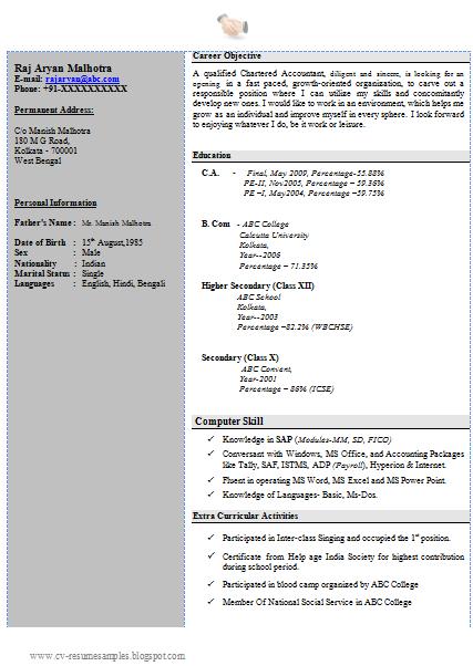 Cv Format Pdf Kenya | Cv Resume Biodata Samples