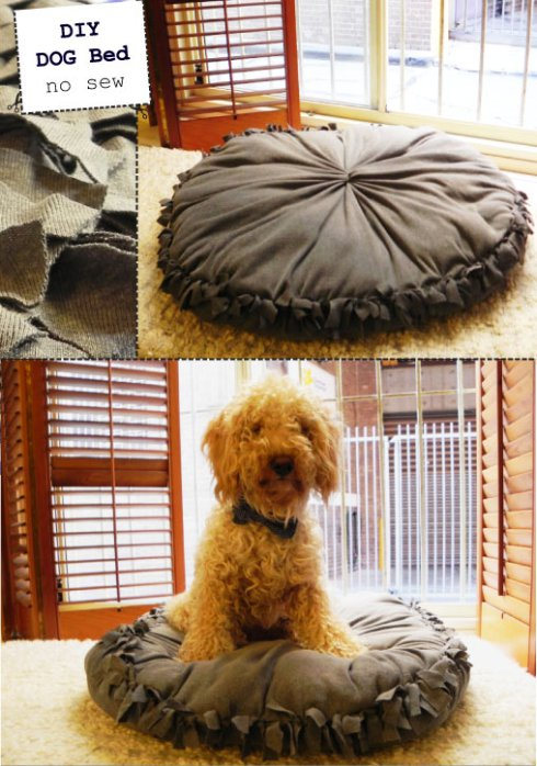 This no-sew doggy bed is so easy to make, you'll want to make more than one!