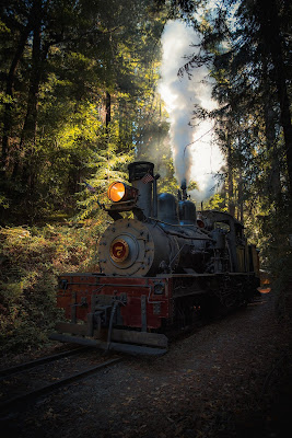 photo of steam locomotive in woods