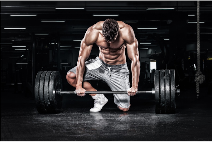 Top 4 Reasons You Are Not Building Muscles