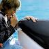Free Willy: Ο νόμος που δίνει ελευθερία σε φάλαινες και δελφίνια