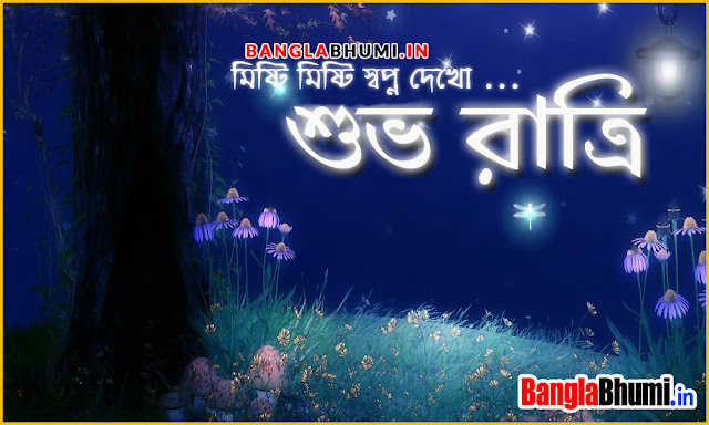 Subho Ratri Bangla Wish Wallpaper - Bengali Good Night Photo