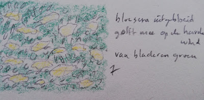 Uitgebloeide bloesem tekening en haiki