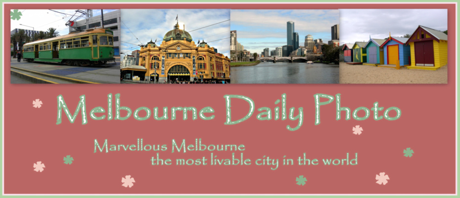 Melbourne Daily Photo