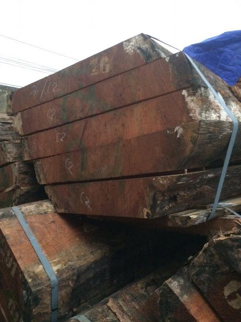 Phân phối gỗ tự nhiên ván xẻ thành khí