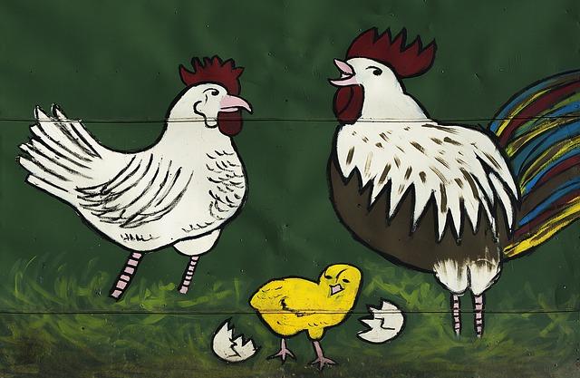 Cerpen  Ayam Gak Ada Akhlak