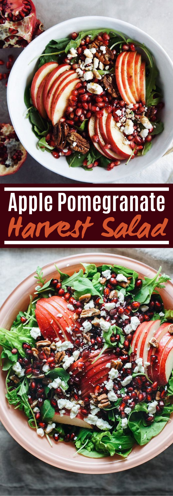 Apple Pomegranate Harvest Salad #healthy #salad