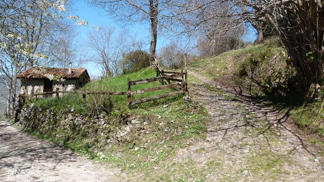 Desvio al Tozu - Caso - Asturias