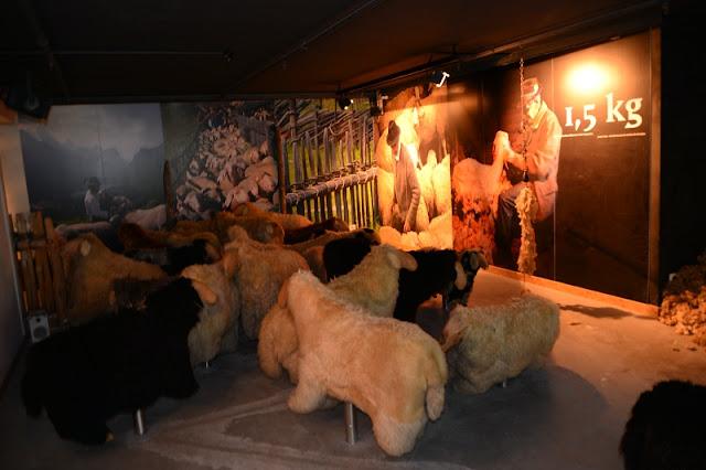 MUSEO DEL LODEN PECORE