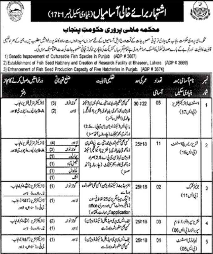 JOBS | Department Of Fisheries Government Of Punjab