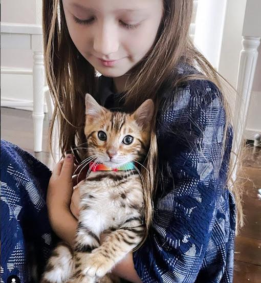 Alec Baldwin and wife Hilaria by Bengal cat for daughter Carmen