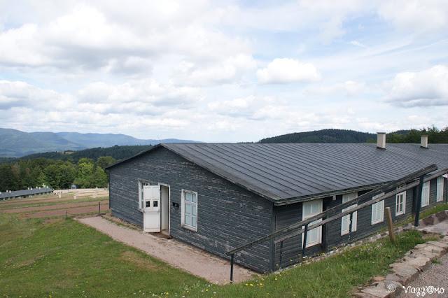 Le baracche del Campo di Concentramento di Natzweiler-Struthof