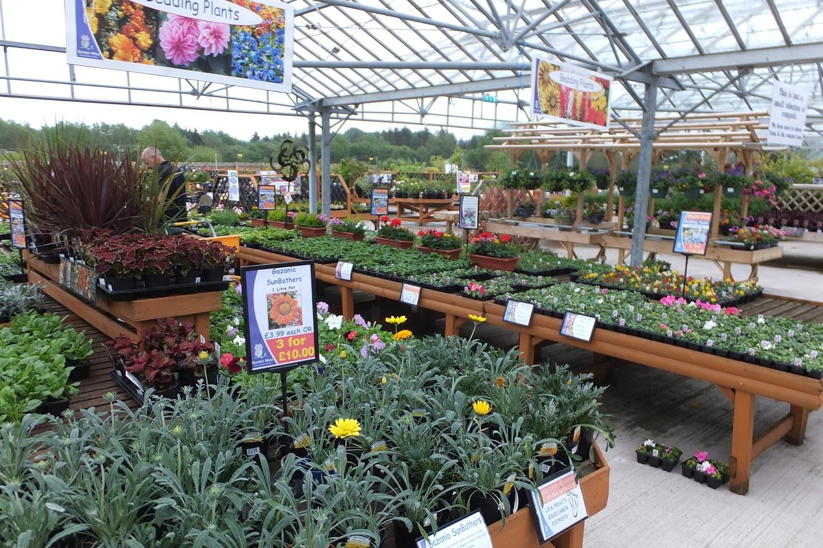 Garden Centre: GCA News: Scotland And N.Ireland Area Winners Revealed